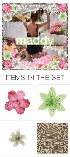 """""""126 