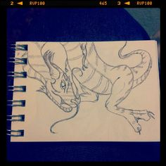 Dragon… thingy? Pen in teenybook.