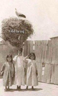 اطفال بغدادييون فوق سطح منزلهم ويلاحظ في خلفية الصورة عش لقلق الصورة في حقبة ثلاثينيات القرن الماضي. Baghdad, Old Photos, The Past, Culture, History, Places, Pictures, Old Pictures, Photos