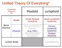 Leukemia  An Overview for Primary Care   American Family Physician