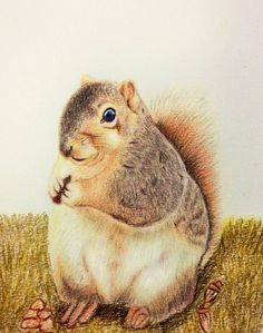 到了放假狂吃的日子 努力的塞塞塞!!!!  #art #illustration #color #painting #squirrel
