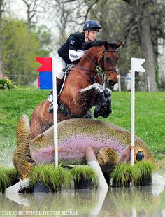 William Fox-Pitt and Seacookie TSF on the Rolex course for the 2nd time in his career. Photo Kat Netzler