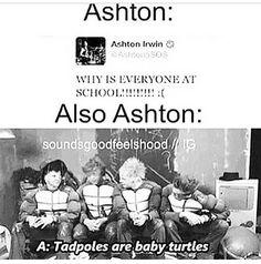 I'm sorry Ashton, please repeat that..