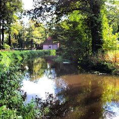 Noordmolen Azelo bij Delden en de Twickelervaart naast de Azelosbeek (niet zichtbaar links van de molen) #water #delden #green #iphonesia #iphoneaddict #instagram - @marcel_tettero- #webstagram #twente #green #nature