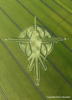 July Crop Circles 2009; obviously a hummingbird....what's strange is that there are dessert carvings in south America dating over 1000 years ago...one of which is almost identical to this crop circle.