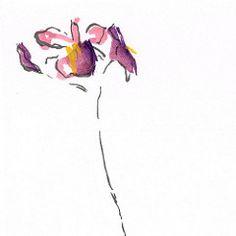 An #impression .#sumi-e #painting #art #ink #flower #sumie #minimalistart #mindfulness #zen #japaneseart #watercolour #watercolor Enjoy!