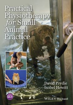 Practical Physiotherapy for Small Animal Practice provides a concise and accessible introduction to physiotherapy that demonstrates its benefits to both veterinary patients and practitioners.  One of the fastest growing specialties in veterinary medicine, this book will help you to successfully introduce physiotherapy into your practice improving rehabilitation and recovery of dogs and cats.