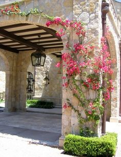 Beautiful stone arch with climbing plant either ( rose or bougainvillea) Wall Climbing Plants, Climbing Flowers, Pergola, Mediterranean Design, Tuscan Design, Flowering Vines, Exterior Design, Brick Design, Garden Landscaping