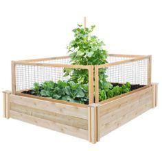 Square Raised Garden Bed Kit Cedar Outdoor Garden Decor Natural Finish