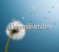 Let your good words and actions be spread through the wind, like the Lion's Tooth flower! http://nuances.co/n/nuance/549e6ffdc601f46c655ce24c