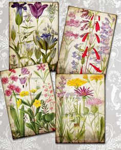 INSTANT DOWNLOAD. Decoupage Botanical plants  summer flowers digital paper - Digital Collage Sheets to  Download Scrapbooking Supplies P3 on Etsy, $4.20