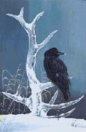 Wildlife Paintings, Bird Art, Great Artists, Bald Eagle, Birds, Crows, Ravens, Graham, Animals