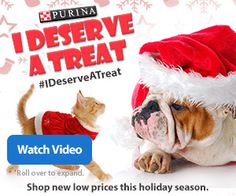 Don't forget about the furry members of your family this holiday season. Celebrate Black Friday with a special offer from Purina.