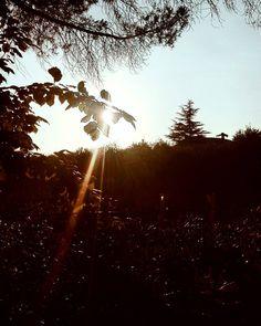 Anche la luce ha le sue forme. Buonanotte anime belle.  Edit with @vscoA4  #buonanotte #goodnight #italia #italy #campania #salerno #vsco #vscocam #vscoitaly #landscape #landscapephotography #landscape_lovers #landscape_captures #photography #photooftheday #photo #amazing #awesome #bestoftheday #beautiful #sky #followme #seguitemi #summer #holiday #igers #igersitalia