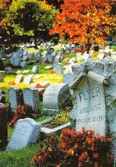 hartsdale crematory | Scene from Hartsdale Pet Cemetery & Crematory: © Hartsdale Pet ...