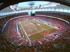 BC Lions, BC Place Lion Games, Bc Place, Sports Games, Concerts, Athletes, Lions, Nhl, Vancouver, Harvest