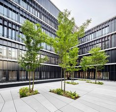 Tips On Urban Landscaping – My Best Rock Landscaping Ideas Entrance Design, Facade Design, Landscaping With Rocks, Modern Landscaping, Brick Architecture, Landscape Architecture, Urban Landscape, Landscape Design, Pavement Design