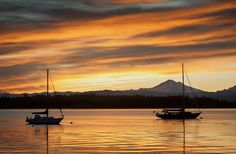 San Juan Island - 10 US Islands Where You Can Beat the Winter Blues | Fodors