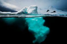 Increíbles fotograífas bajo el agua!