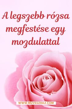 Rózsa egy mozdulattal Cute Happy Birthday Wishes, Birthday Wishes For Sister, Saturday Morning Quotes, Good Morning Quotes, Morning Msg, Good Morning Messages, Good Morning Images, Productive Things To Do, Everything Is Possible