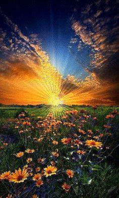 lindo pôr do sol...