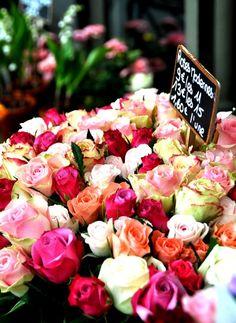 Rosen . Roses . Blumenstand