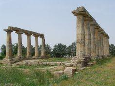 Metaponto, Tavole Palatine. Sono i resti dei templi di Hera.