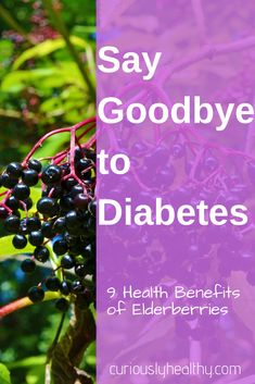 Regulate your blood sugar and help manage diabetes plus 8 other health benefits of the new superfood Elderberries Elderberry Benefits, Elderberry Syrup, Elderberry Recipes, Beat Diabetes, Diabetes Meds, Diabetes Diagnosis, Whisky Tasting, Regulate Blood Sugar, Food Pyramid