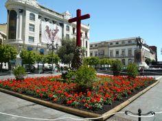 Cruz de Mayo. Plaza de Las Tendillas. Cordoba.