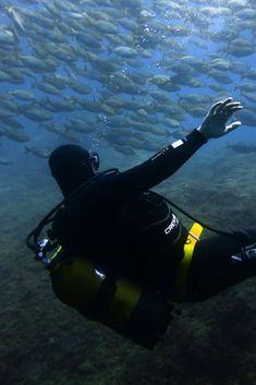 Scuba & the CIty: Underwater adventures in Marseille, France - World Adventure Divers - Travel - Scuba diving – Read more on https://worldadventuredivers.com/2013/08/23/scuba-the-city-underwater-adventures-in-marseille-france/ #cubaDiverLife