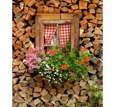 Wood house.