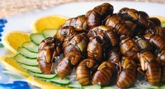 So you like insects? Then you'll love hachinoko, deep-fried bee larvae served as a yummy bar snack. | 17 Dishes That Prove Japanese Food Is Totally Fucking Insane