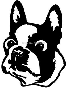 boston terrier coloring pages - Boston Terrier Coloring Page