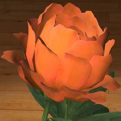 Piwonia pomarańczowa 3D  www.florysta3d.pl
