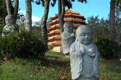 Chinese New Year Chung Tian Temple Buddhist Retreat, Brisbane Events, Things To Do In Brisbane, Buddha Zen, Asian Garden, Stuff To Do, Cool Stuff, Dog Years, Conceptual Design