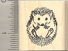 Amazon.com: Small Hedgehog Rubber Stamp: Arts, Crafts & Sewing