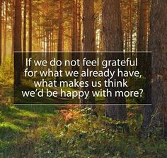 if we do not feel grateful for what we already have - Google Search