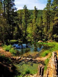 McCauley Warm Springs, the upper two ponds, Jemez Mountains, New Mexico Photo by F Kevin Wynkoop