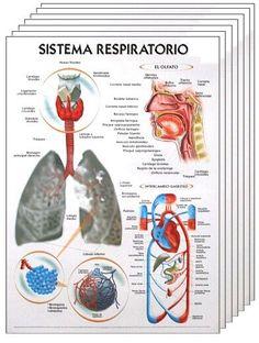 Medical Students, Medical School, Student Motivation, Med School, Science For Kids, Genetics, Biology, Books, Itachi
