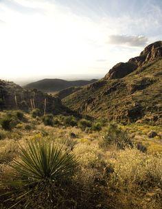 Franklin Mountains State Park, El Paso, TX