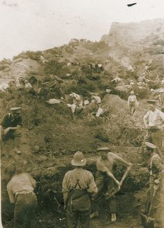 Wellington Battalion soldiers dig trenches on Walker's Ridge in the days immediately after the landing History Online, World History, World War One, First World, Gallipoli Campaign, Anzac Cove, Ww1 Photos, Flanders Field, Anzac Day