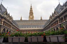 Inside the Wiener Rathaus