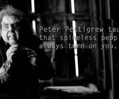 Petter Pettigrew taught us. Peter Pettigrew, Harry Potter Jokes, The Marauders, Mischief Managed, Fantastic Beasts, Twilight, Find Image, We Heart It, Teaching