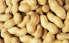 Are Peanuts Good for you? Know the Health Benefits of Peanuts and nutrients in peanuts. Check out roasted peanuts, boiled peanuts and raw peanuts nutrition.