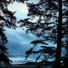 View from the Pointe Building at the Wickaninnish Inn, Tofino BC