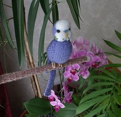 Budgerigar  Knitted life size Budgie   Benji  .  handmade needle felted face