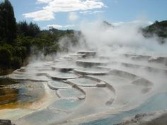 Rotorua Thermal Rese