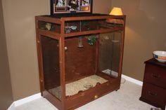 Something Creative with Bird Aviary Plans : Indoor Bird Aviary Plans. How To Build Abs, Large Bird Cages, Bird House Kits, Bird Aviary, Backyard Birds, Kit Homes, Bird Houses, Home Projects, Liquor Cabinet
