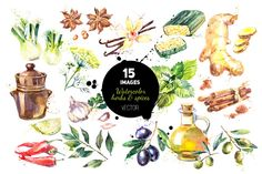 Watercolor Herb & Spices Vector Set - Illustrations - 1
