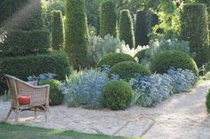 Boxwood and Sea Holly Topiary at Hanham Court
